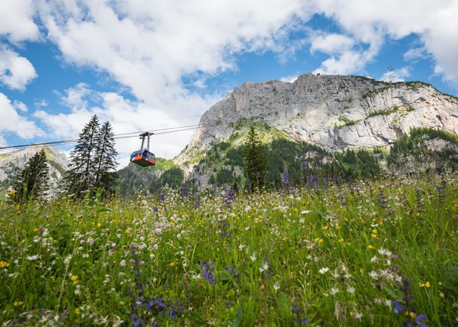 Con Marmolada - Move To The Top, un'estate tra natura e storia sul tetto delle Dolomiti