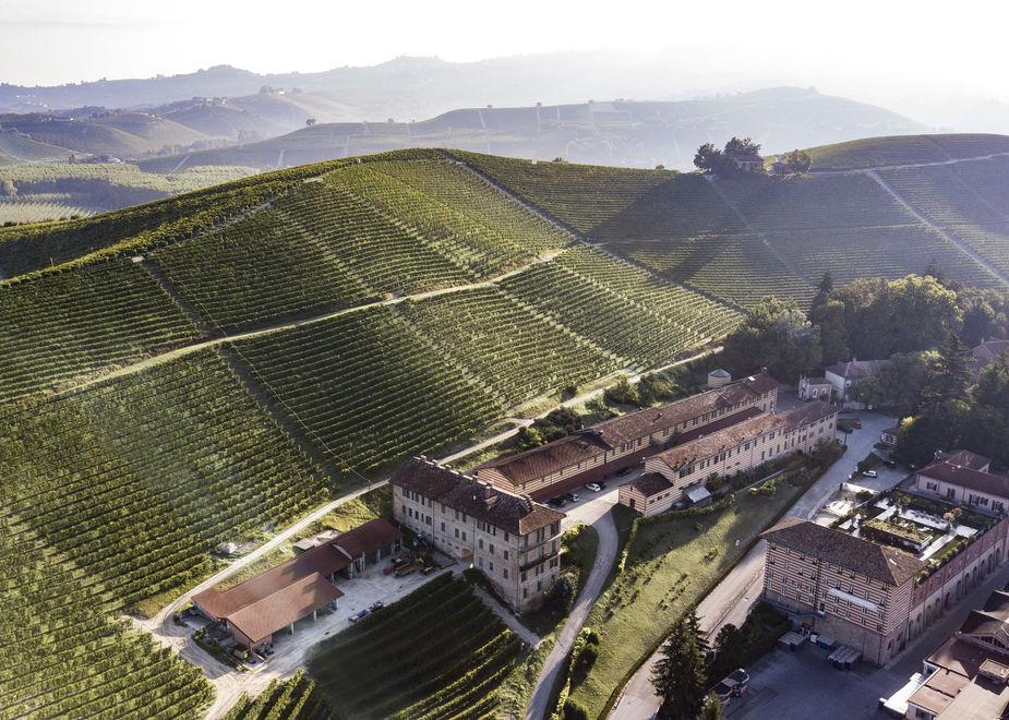 """Il vino """"verde"""" di Fontanafredda, simbolo di rinascita all'insegna della sostenibilità"""